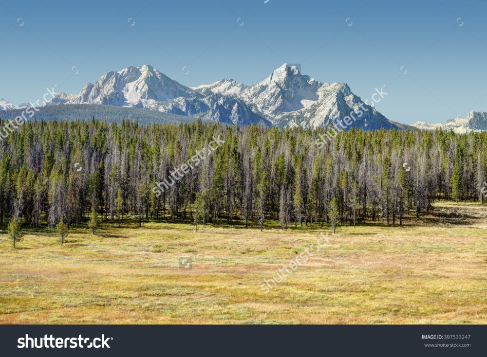 stock-photo-a-view-of-the-sawtooth-mountains-in-central-idaho-397533247[269].jpg