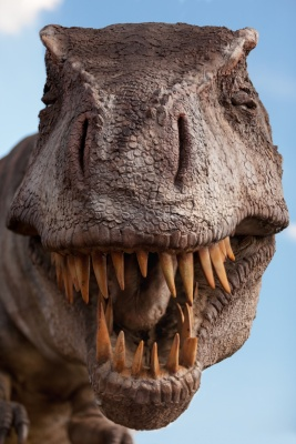 tyrannosaurus-rex[1139].jpg