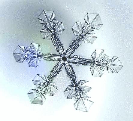 snowflake_image[1221].png