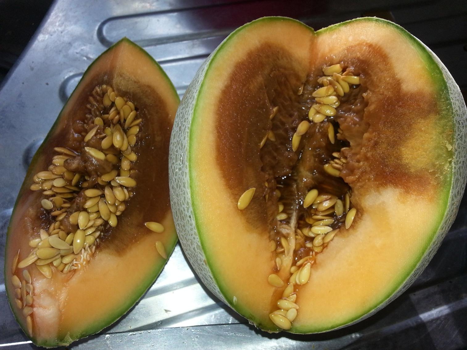 fruit-1646764_1920[690].jpg